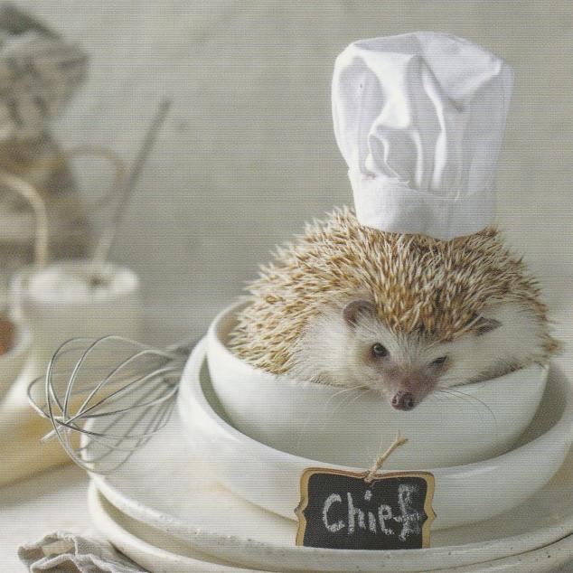 Ansichtkaart Chef.