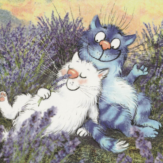 Ansichtkaart Blue Cat in Lavendel Veld.