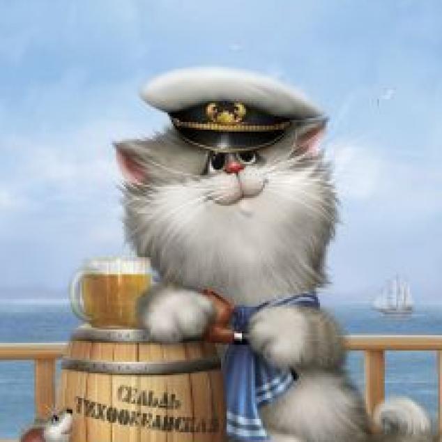 Ansichtkaart Kapitein.