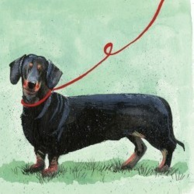 Greeting Card Dachshund.