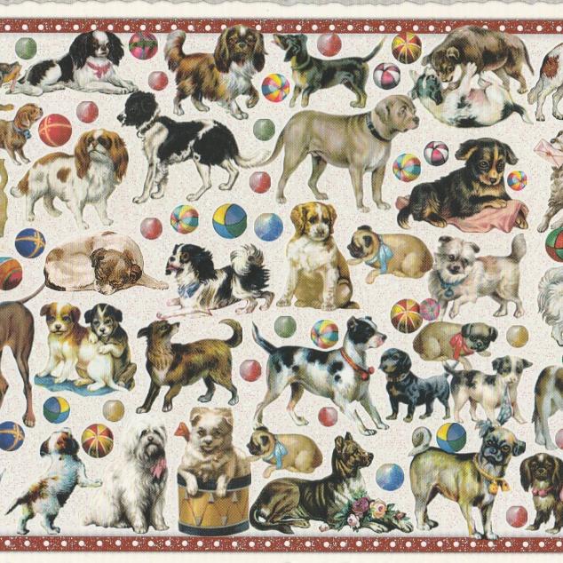 Ansichtkaart Heel Veel Honden.