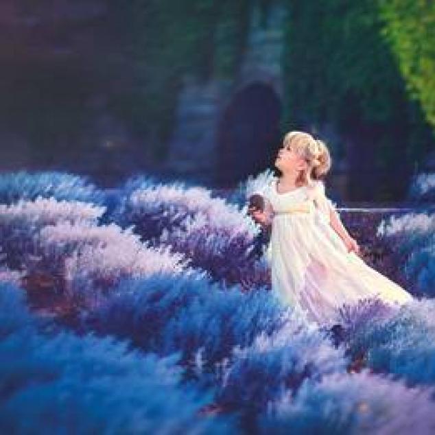 Ansichtkaart in een Lavendelveld.