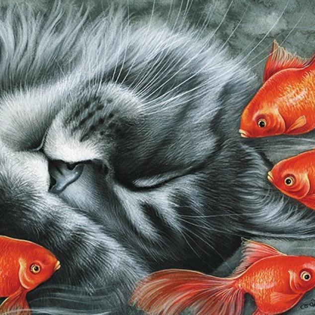 Ansichtkaart Slapen voor het Aquarium.