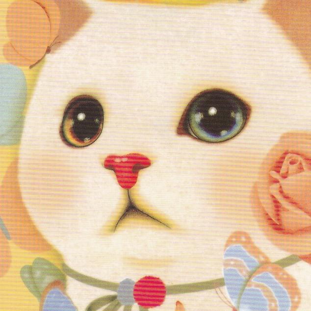 Ansichtkaart Jetoy - Witte Kat.