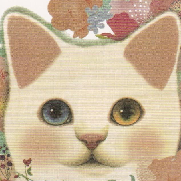 Ansichtkaart Jetoy - Prachtige Ogen.