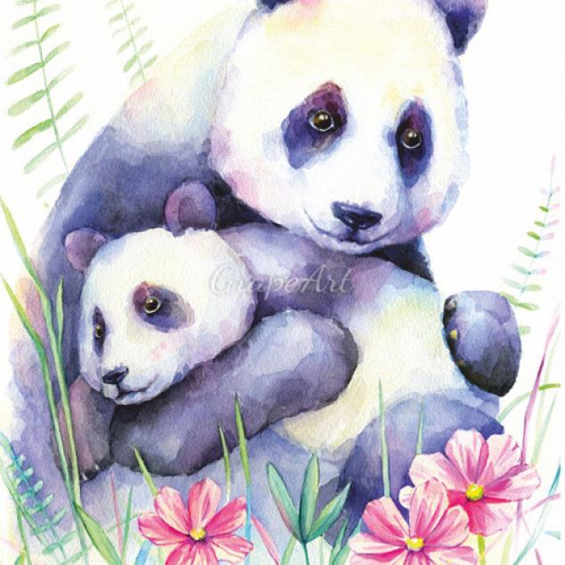 Ansichtkaart, Panda Liefde.