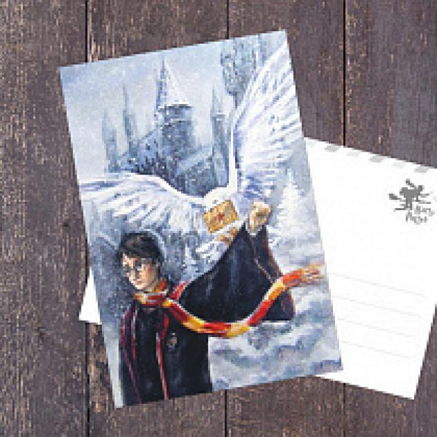 Ansichtkaart Harry Potter en zijn Uil.