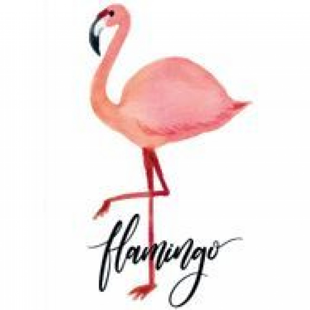 Ansichtkaart Flamingo.