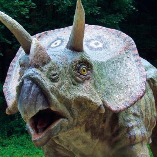 Ansichtkaart Triceratops.