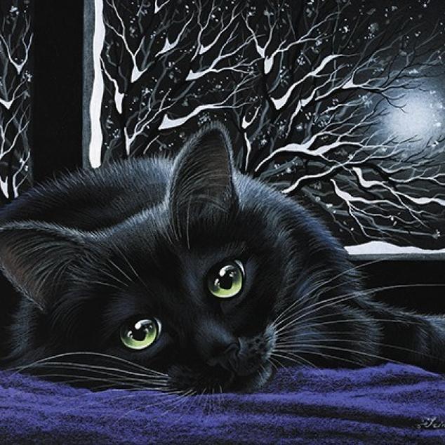 Ansichtkaart Zwarte Kat voor het Raam.