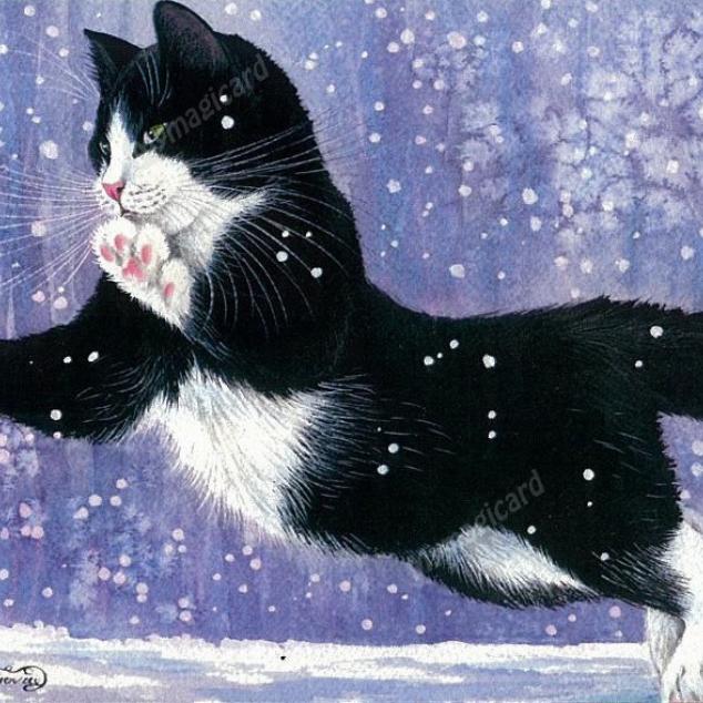 Ansichtkaart Duik in de Sneeuw.