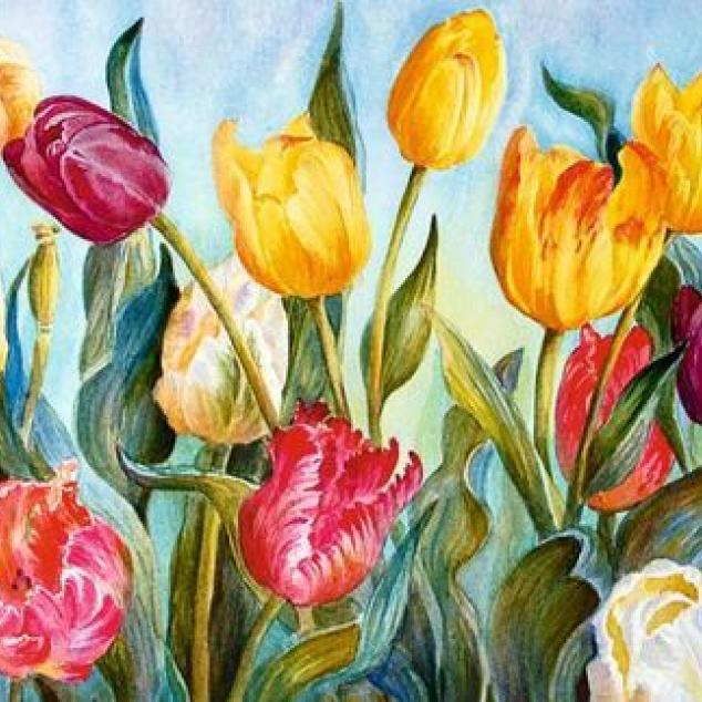 Ansichtkaart Hollandse Tulpen.