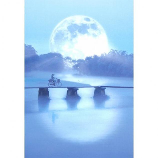 Wenskaart Reis door het maanlicht.