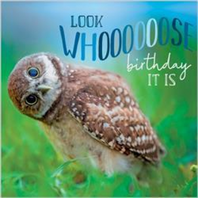 Wenskaart Look Whoooooose Birthday it is.