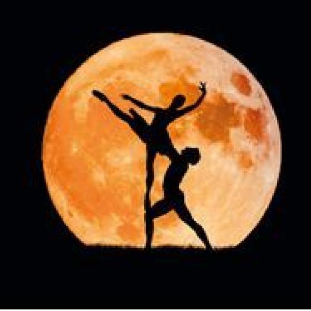 Ansichtkaart Dansen in het Maanlicht.