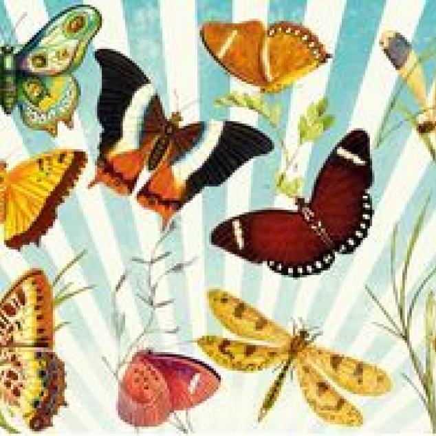 Ansichtkaart Heel Veel Vlinders.