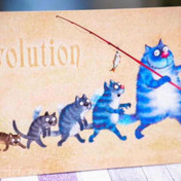 Ansichtkaart de Evolutie van Blue Cat.