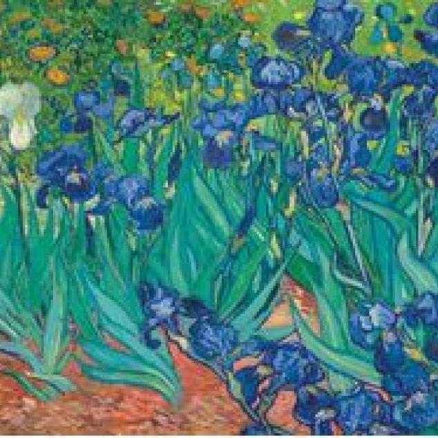 Ansichtkaart Irissen door van Gogh.