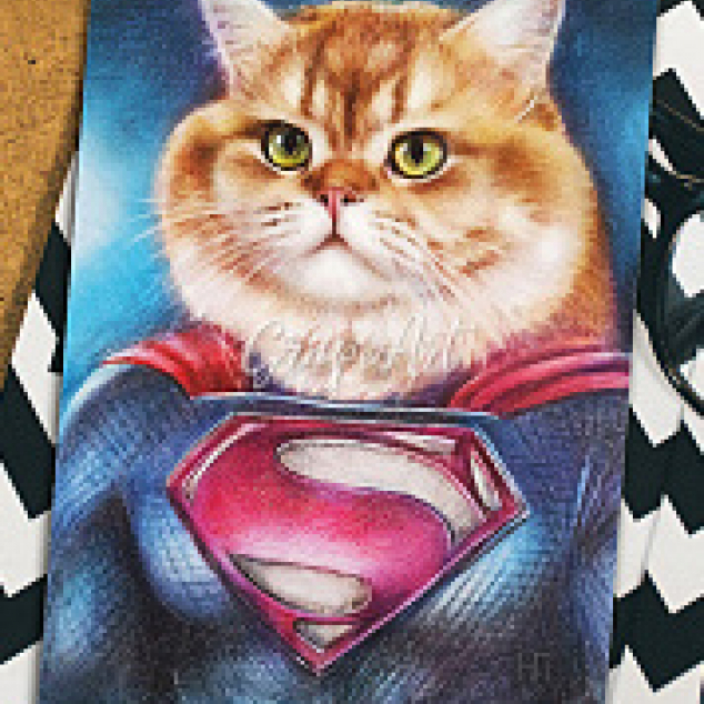 Ansichtkaart Super Cat.